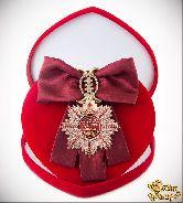Большой Орден Лучшая мама (бордовая лента)