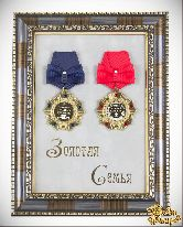 Ордена в багете Самый лучший дедушка и Самая лучшая бабушка (Золотая семья)