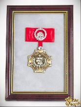 Орден в багете Самому лучшему врачу! (красный бант, стразы)