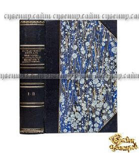 Старая книга Биографический словарь профессоров и преподавателей