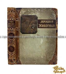 Антикварная книга Наши домашние животные