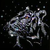 Картина Снежный тигр