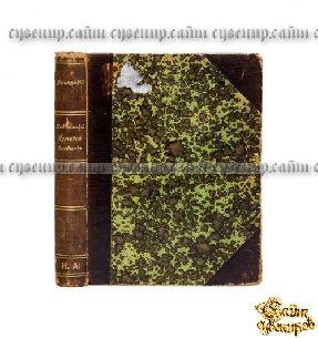 Старая книга Кавказский путевой дневник