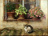 Кошка под окном, картина, Модерн животный мир №22
