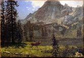Горный олень, картина, Модерн животный мир №29