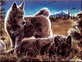 Волчата, картина, Модерн животный мир №32