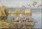 Дикие утки, картина, Модерн животный мир №37