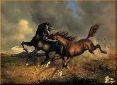 Борьба лошадей, картина, Модерн животный мир №43