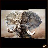 Слон в тумане, картина, Модерн животный мир №4