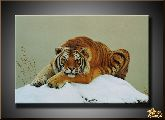 Тигр на снегу, картина, Модерн животный мир №50