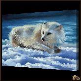 Песец, картина, Модерн животный мир №54
