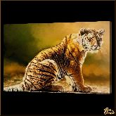 Тигренок, картина, Модерн животный мир №58