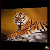 Тигр, картина, Модерн животный мир №5