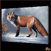 Лисица, картина, Модерн животный мир №6