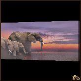 Семейство слонов, картина, Модерн животный мир №71