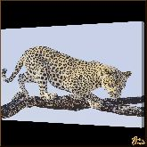 Ягуар на ветке, картина, Модерн животный мир №75