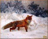 Лисица на охоте, картина, Модерн животный мир №77