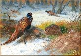 Птицы зимой, картина, Модерн животный мир №79