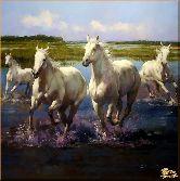 Белые лошади на природе, картина, Модерн животный мир №87