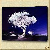 Деревья в ночи, картина, Модерн пейзаж №11