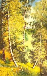 "Картина на холсте ""Березовый лес"""