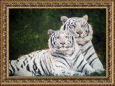 Белые тигры 70*110 панно гобелен, двойной багет