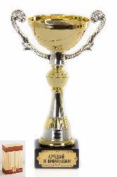 Кубок подарочный Чаша золотая с серебр.рельефными ручками Лучший в профессии
