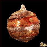 Ёлочный шар из Италии Шоколадный десерт