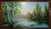 Лебеди на озере в лесу