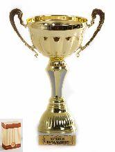 Кубок подарочный Чаша с рельефными ручками Лучшей начальнице 22см
