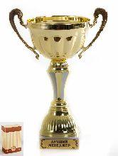 Кубок подарочный Чаша с рельефными ручками Лучший менеджер 22см