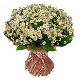 """Букет цветов """"На лугу"""""""