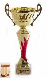 Кубок Огонь Приручившему победу