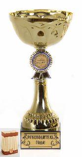 Кубок подарочный Чаша с эмблемой Руководитель года