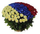 "Корзина с цветами ""Патриот"""