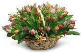 """Корзина с цветами """"Светлые Будни"""""""