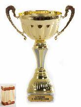 Кубок подарочный Чаша с рельефными ручками Лучший в профессии 22см