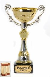 Кубок подарочный Чаша золотая с серебр.рельефными ручками Приручившему победу