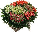 """Корзина с цветами """"Весенний Вальс"""""""