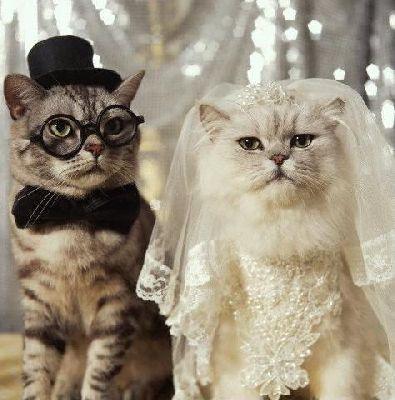Открытка с днем свадьбы 35