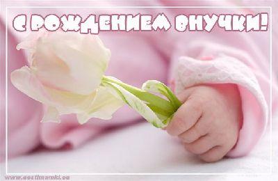 Открытка с рождением внучки 4