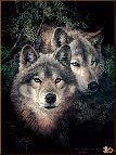 Животный мир, картины, подарок