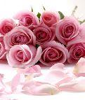Открытки - цветы