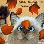 Открытки - скоро осень